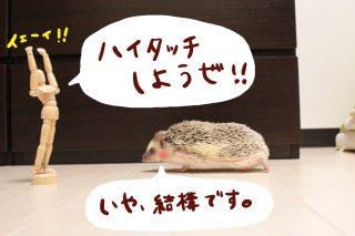「ハイタッチしようぜ!!」
