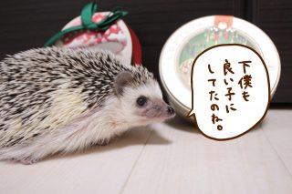 下僕のクリスマス