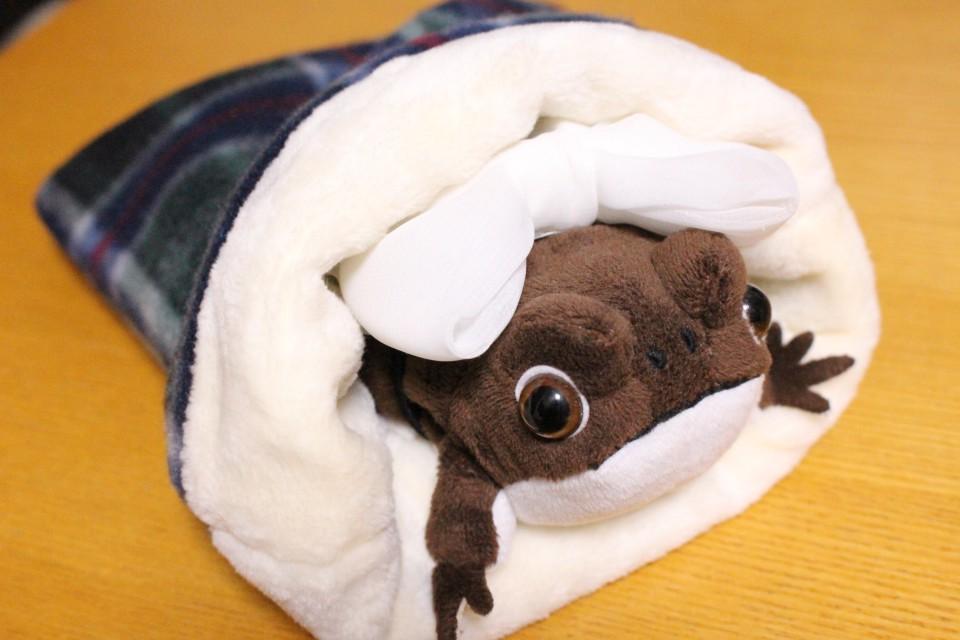 ハリネズミ 寝袋 作り方