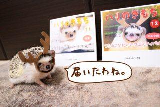 nohanaのフォトブックが届きました♪(12月号)