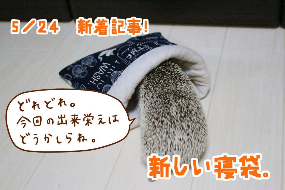 ハリネズミ 寝袋 手作り